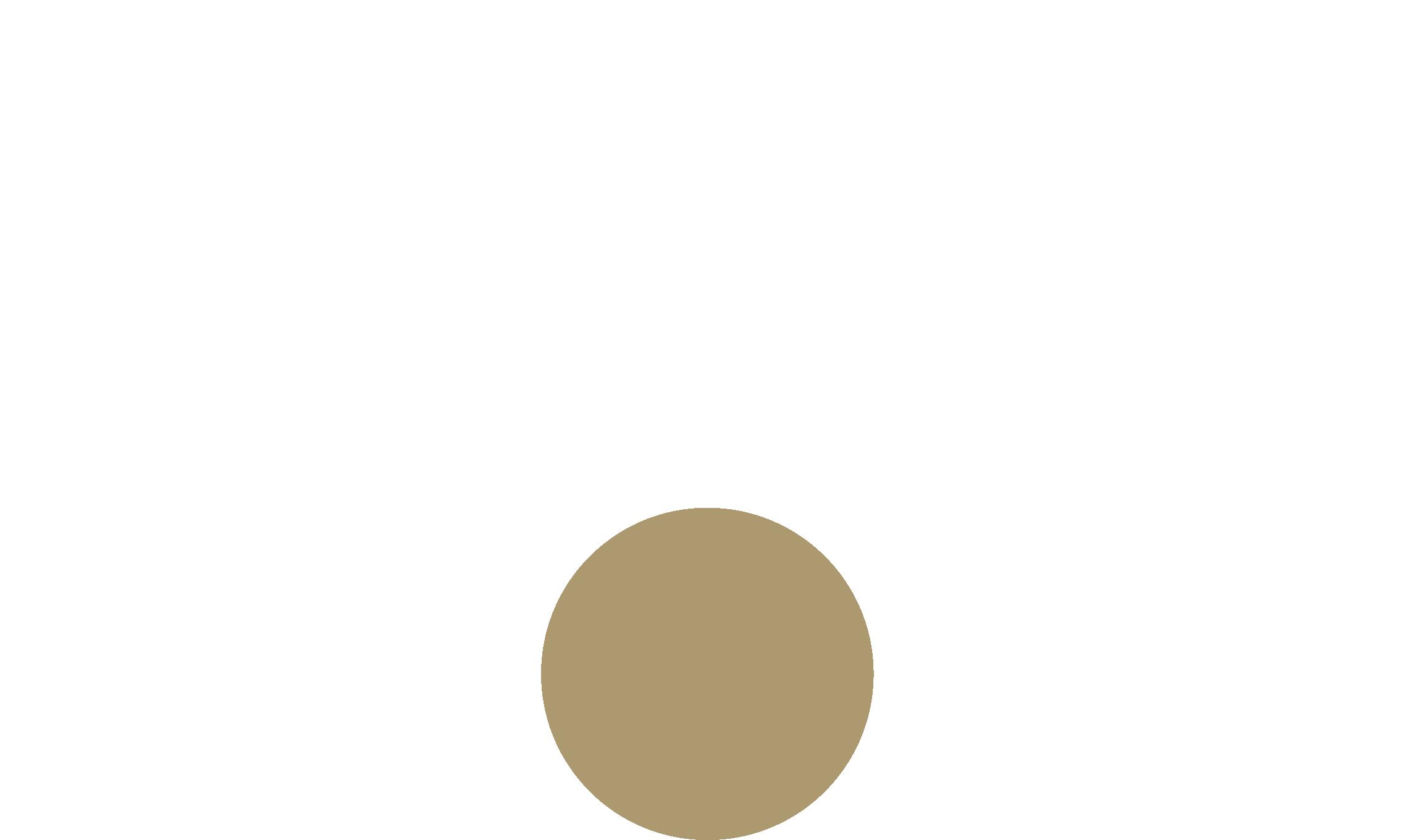 RØDE_Logo_Inverse_300dpi_RGB